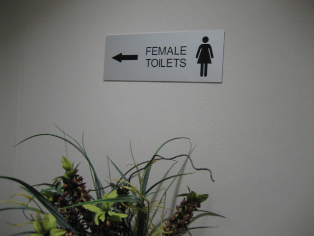 Engraved Stainless Toilet Sign